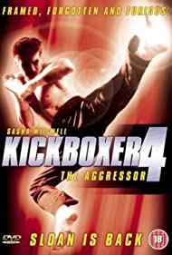 Poster Kickboxer 4: The Aggressor