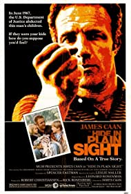 Hide in Plain Sight, 1980