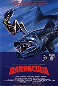 Barracuda, 1978