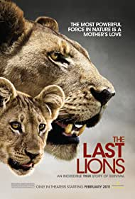 Poster The Last Lions