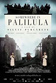 Poster Undeva la Palilula